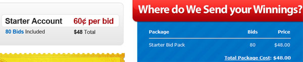 QuiBids Signup Charge $48.00